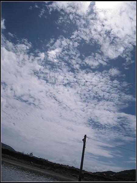 IMG_8142 (大型).jpg