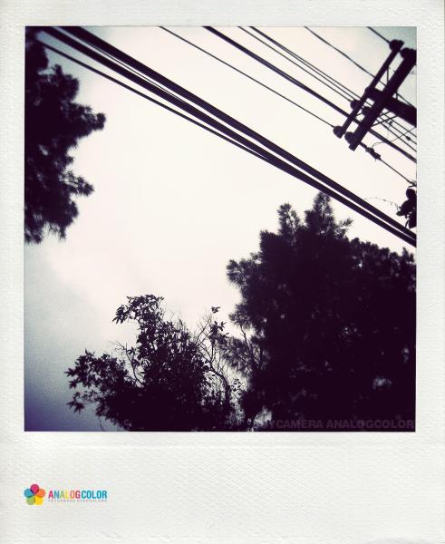 IMG_4222.JPG_effected.png