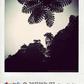 IMG_5415.JPG_effected