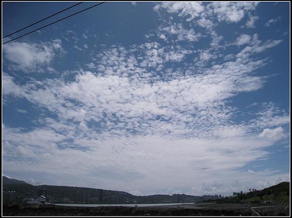 IMG_8139 (大型).jpg