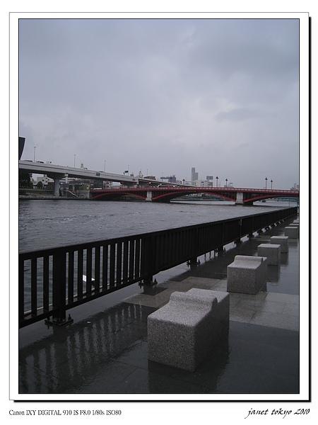IMG_6695.jpg