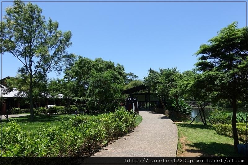 桃園八德碑塘自然生態公園