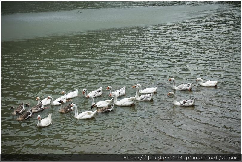 宜蘭長埤湖