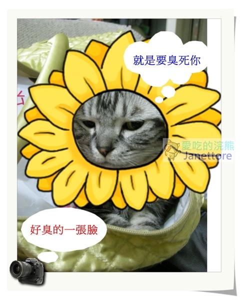 DSCN8327_nEO_IMG.jpg