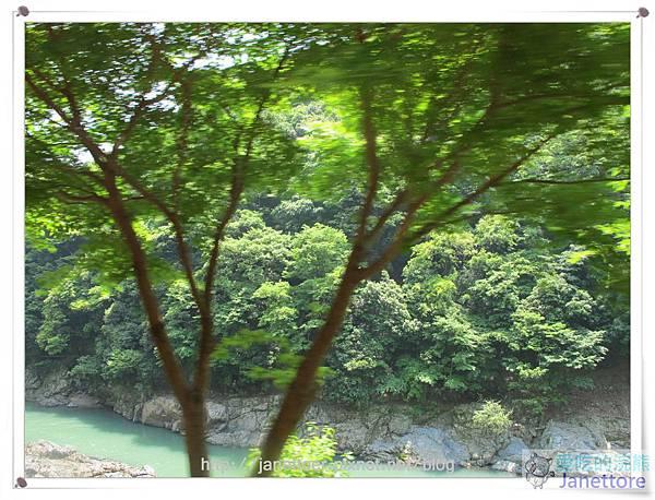 IMG_8950.jpg