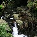 高低落差的溪谷間的小小瀑布