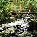跨過石磐瀑布上游的木柵道