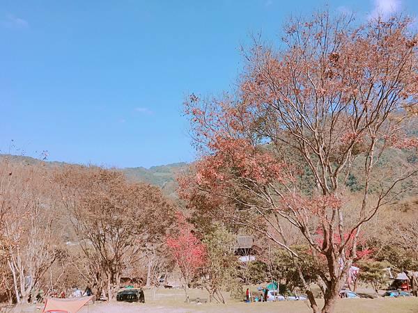 IMG_0985.JPG