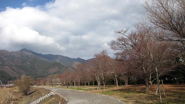 IMG_4621.JPG