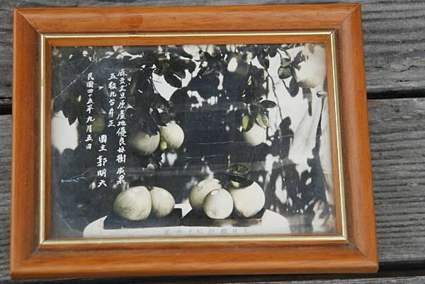 固片參考來源台南市麻豆光觀旅遊網1.jpg