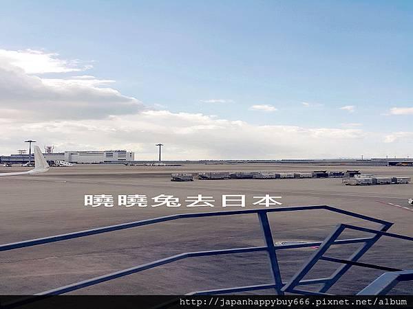 菲律賓航空(PR) 桃園機場 東京玩美 曉曉美人 日本代購 跑單幫實戰批發教學-9.jpg