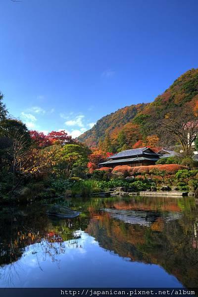 庭園(秋).jpg