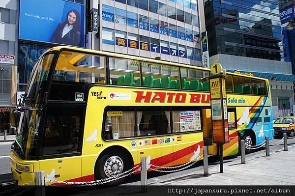 hato bus01