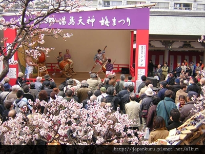 20130217_ume matsuri