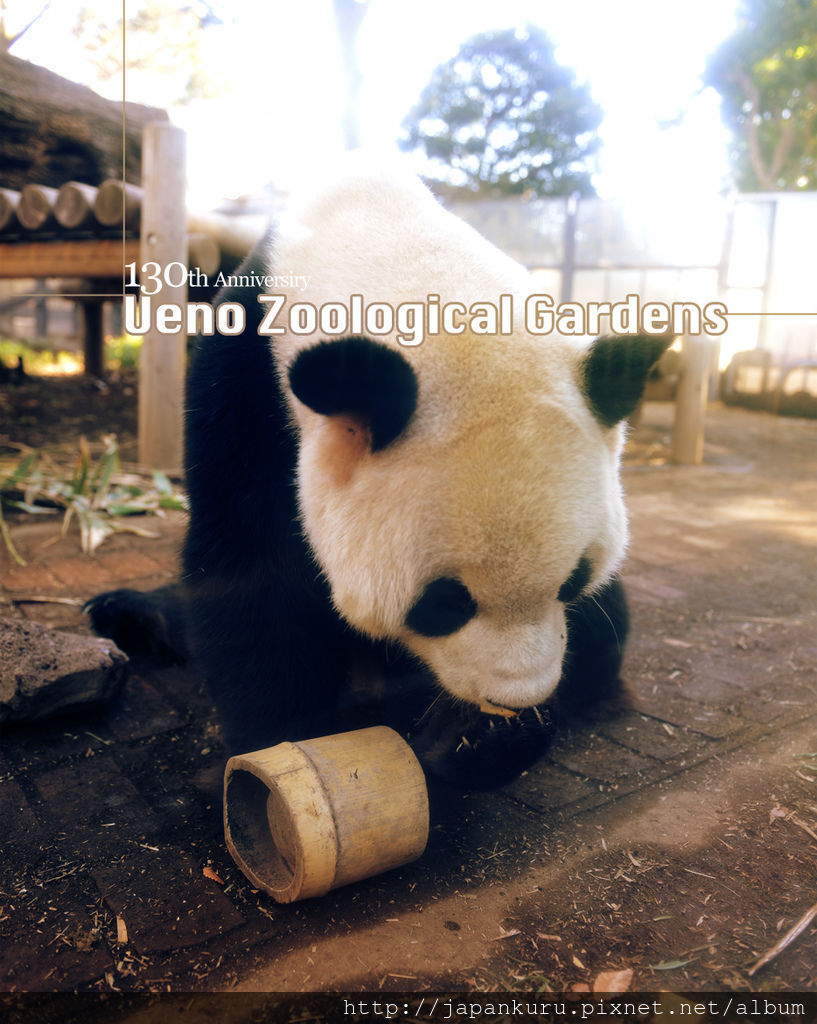 20130328_ueno zoo