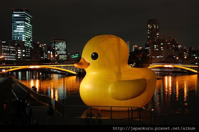 duck project_2010 osaka