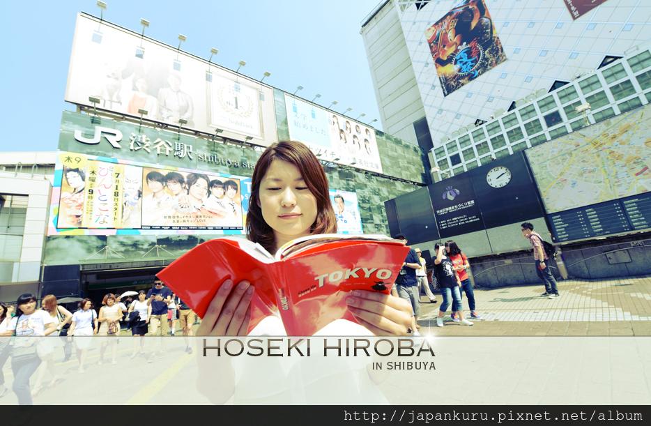 HOSEKI HIROBA02