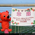 WINTER_CHIBA02_23.jpg