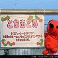 WINTER_CHIBA02_22.jpg