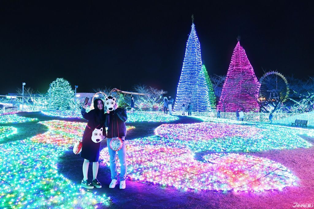 YomiuriLand_Illumination_CC03_OG.jpg