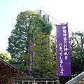 DSC02468_Fotor.jpg