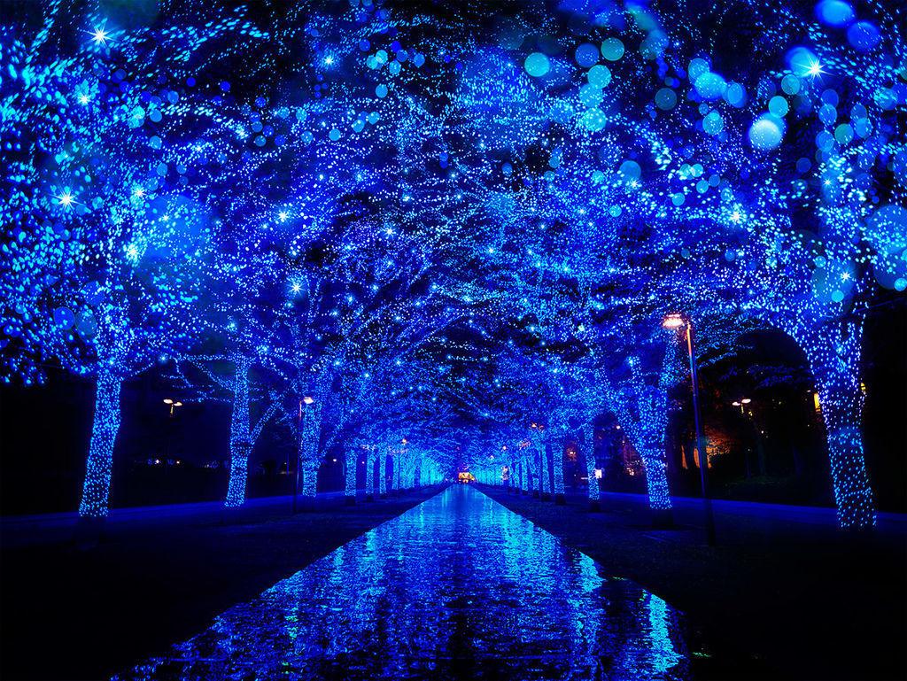 SHIBUYA.jpg.jpg