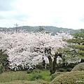 日本三大名園 兼六園