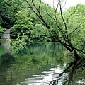 湯布院溫泉 金麟湖