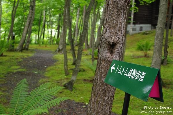 NIDOM森林度假村