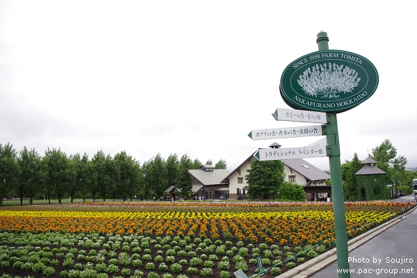 富田農場 (6).jpg