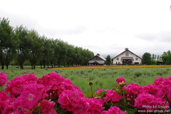 富田農場 (9).jpg