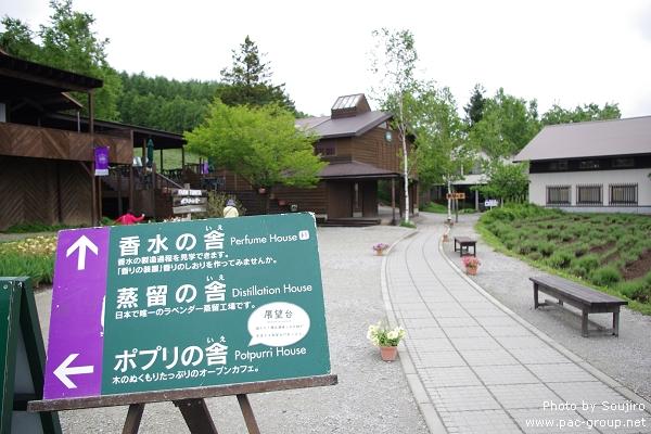 富田農場 (13).jpg