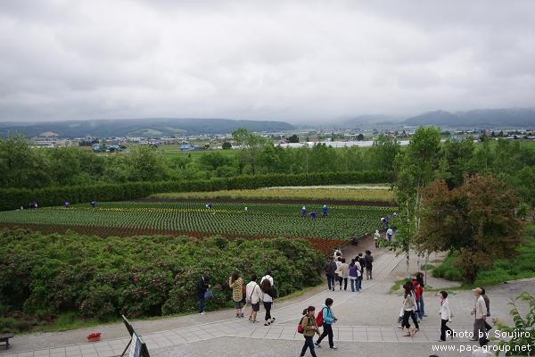 富田農場 (20).jpg