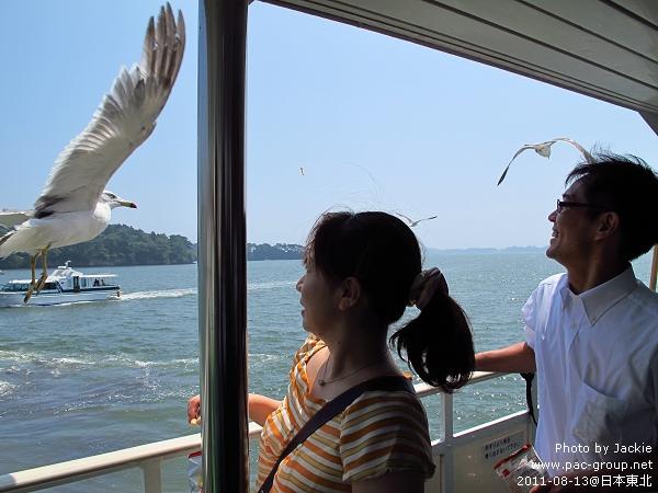 松島遊船 (15).jpg