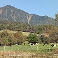 八個岳牧場 (27).jpg