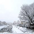 宮川朝市 (1).jpg