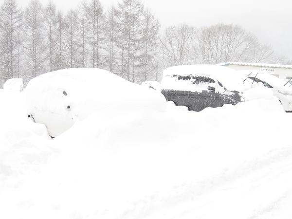 滑雪場 (7).jpg