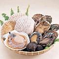 松島牡蠣 (2).jpg