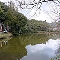 D3-3 嵐山 (2).jpg