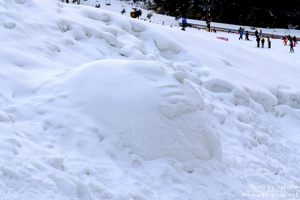 D2-2 滑雪場 (16).jpg