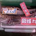 D3-5 近江町市場 (5).jpg