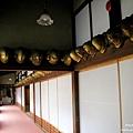 D2-2 柳川御花 (2).jpg