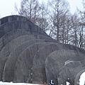 D2-4 石之教堂 (6).jpg