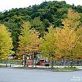中禪寺湖 (1).jpg