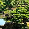 由志園牡丹花園 (3).jpg