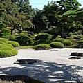 由志園牡丹花園 (36).jpg