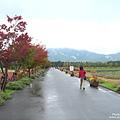 花之都公園 (4).jpg