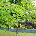 花之都公園 (16).jpg