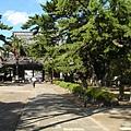 小湊山誕生寺 (7).jpg