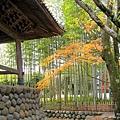 箱根神社 (4).jpg